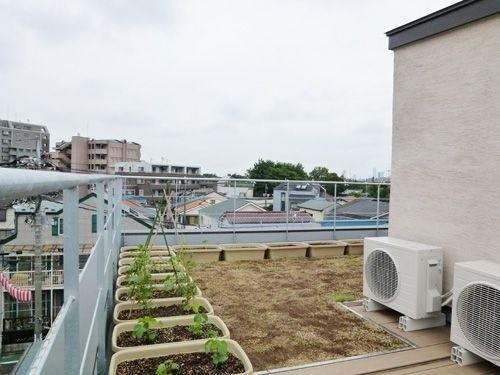 芝生とプランターが設置された屋上の風景