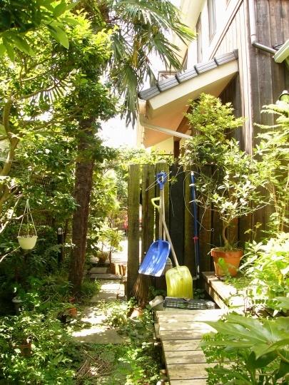 緑豊かな植栽が植えられた庭