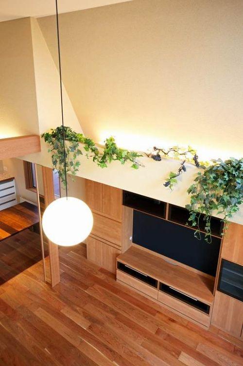 室内の壁を工夫して、植物を上から吊るすのもアイデアのひとつ