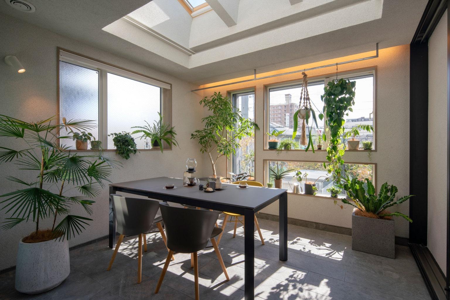手軽に取り入れるなら、室内緑化でジャングル計画!