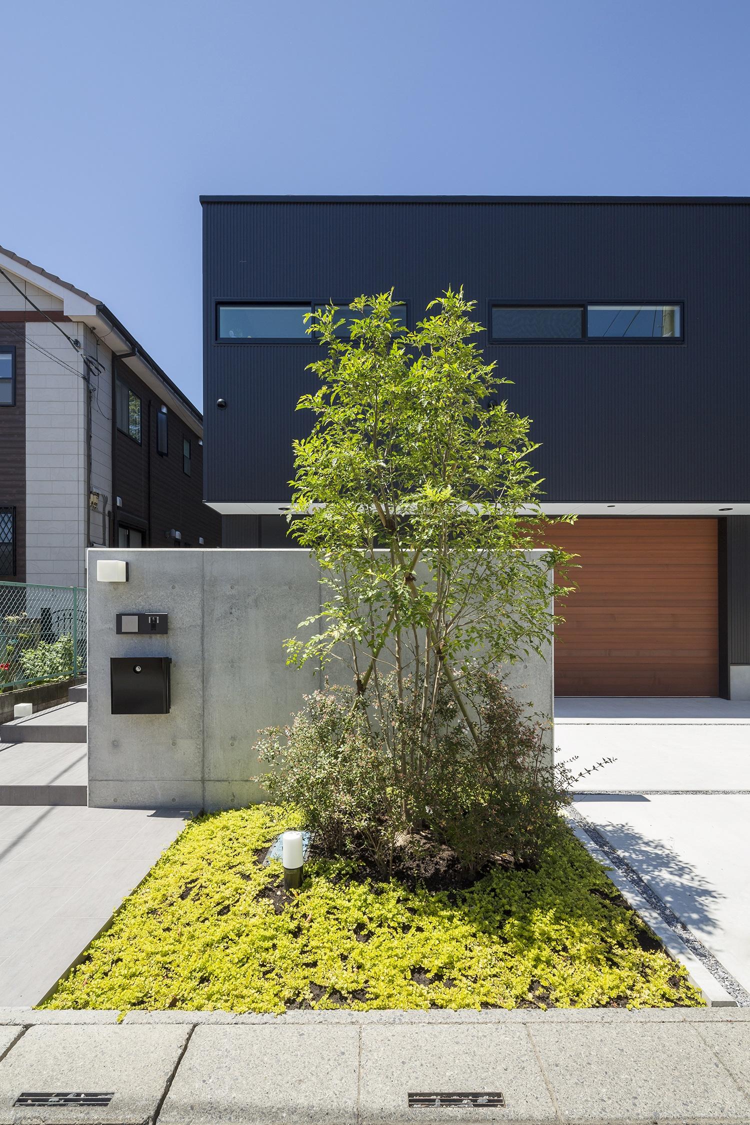 木が植えられたコンクリートの塀の家